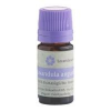 Levendarium Levendarium illóolaj lavandula angustif. 10 ml