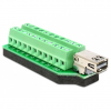 DELOCK Displayport mini -> Terminal block 22pin F/F adapter