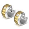 Fülbevaló 316L acélból arany-ezüst kivitelezésben, átlátszó cirkónia
