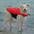 Trixie 30142 kutya mentõmellény S 36cm