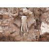 Consalnet Kő elefánt 10115 több méretben, alapanyagban