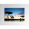 Byhome Digital Art vászonkép | 1229-S African Sunset ONE