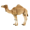 Mojo Animal Planet Arab teve figura