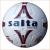 Dalnoki Sport Salta United futballabda