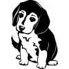 Gungldekor Aranyos kutya 2 db plottervágott autós matrica applikáló fóliával