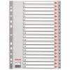 Nebuló Regiszter, műanyag, A4, 1-20, ESSELTE, szürke
