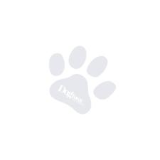Acana REGIONAL Ranchlands Cat 1,8kg kutyaeledel