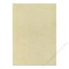 APLI Előnyomott papír, A4, 200 g, APLI, havanna (LCA11960)