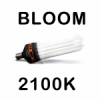 Babylon-Grow Advanced Star PRO STAR BLOOM 2100K CFL izzó