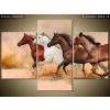 Balkys Trade Nyomtatott kép Gyönyörű lovak állománya 90x60cm 2062A_3B