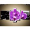 Balkys Trade Nyomtatott kép Lila orchidea 160x80cm 1379A_5J