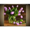 Balkys Trade Nyomtatott kép Tulipánok és almák 2155A_1AI