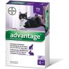 Bayer Advantage 80 Cat/Rabbit 4 x 0,8 ml (4 db pipeta)