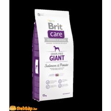 Brit Care Grain-free Giant Salmon & Potato 3kg kutyaeledel
