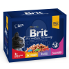 Brit Premium Cat Family multipack 12 x 100 g