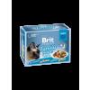Brit Premium Cat tasakos Delicate Fillets in Jelly Family Plate 12x85g