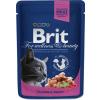 Brit Premium Cat with Salmon & Trout 2.4kg