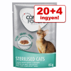 Concept for Life 20 + 4 ingyen! 24 x 85 g Concept for Life nedvestáp - Sterilised Cats - szószban