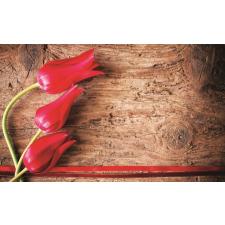 Consalnet Tulipánok 272 több méretben, alapanyagban tapéta, díszléc és más dekoráció