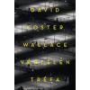 David Foster Wallace Végtelen tréfa