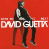 David Guetta Nothing But The Beat (2 CD)
