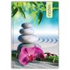 DAYLINER Colors, A5 Notes, vonalas jegyzet, Zen