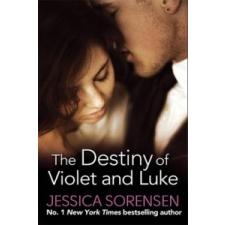 Destiny of Violet and Luke – Jessica Sorensen idegen nyelvű könyv