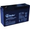 DIAMEC 6V 12Ah zselés akkumulátor DM6-12