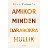 ÉDESVÍZ Pema Chödrön - Amikor minden darabokra hullik (új példány)