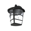 EGLO 93097 outdoor-WL 1-light E27 60W, upwards, black/clear 'ALORIA'