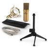Electronic-Star auna MIC-900G-LED V1 USB mikrofon szett, arany kondenzátor mikrofon | asztali állvány