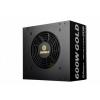ENERMAX Revolution Duo 600W (ERD600AWL-F)