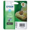Epson T03454010