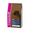 Eukanuba Adult Boxer CKN 12 kg