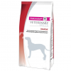 Eukanuba Intestinal Dog 2 x 12 kg