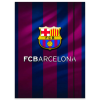 Eurocom FC Barcelona: gumis mappa - A4