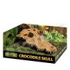 ExoTerra Crocodile Skull krokodilkoponya 15cm