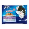 FELIX Fantastic teljes értékű állateledel kölyökmacskák számára csirkével és lazaccal 4 x 100 g