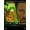 FILM - Márió A Varázsló DVD