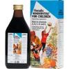Floradix Floradix Kindervital 250 ml