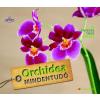Folko Dr. Kullmann Orchidea mindentudó