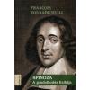 Francois Zourabichvili Spinoza