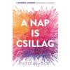Gabo Nicola Yoon: A Nap is csillag
