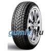 GT Radial Champiro Winterpro 2 ( 195/55 R15 85H )