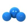 Gymnic Medball vízfelszínen úszó levegötöltetes medicin labda 1Kg 23cm - gumi medicin labda