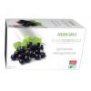 Herbária Feketeribizli gyümölcstea 20 filter