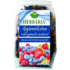 Herbária gyümölcstea erdei gyümölcsös 120g tea