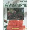Holló és Társa Balkon- és dézsás növények