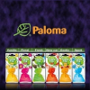 Illatosító Paloma Happy Bag SPORT