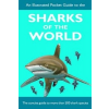 Illustrated Pocket Guide to the Sharks of the World – Sarah Fowler